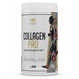 Collagen Pro - 540 g
