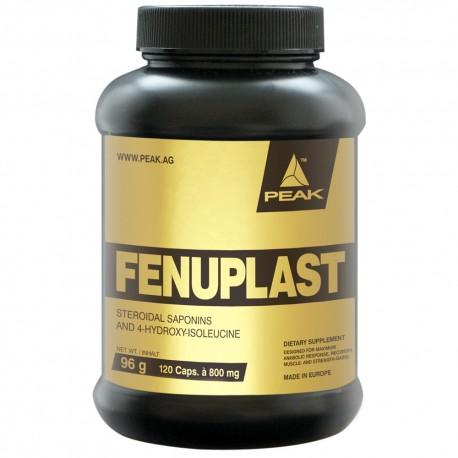 FenuPlast
